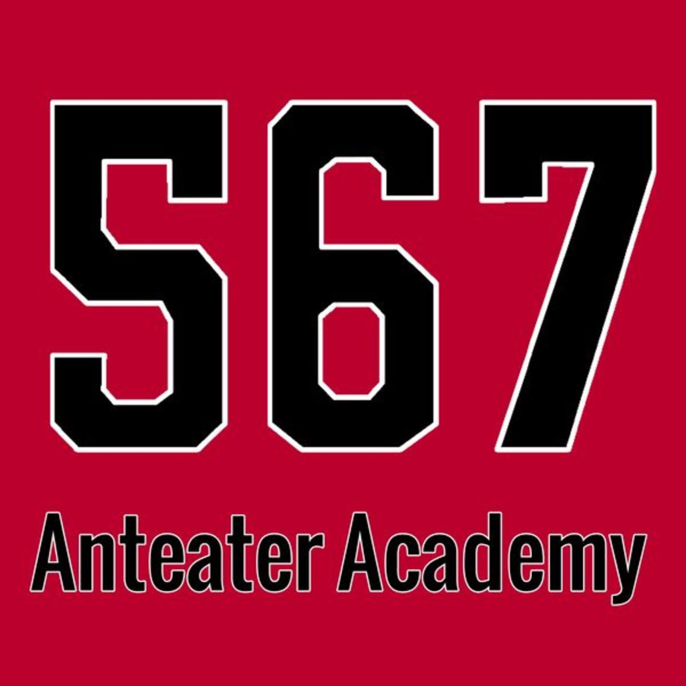 <![CDATA[Anteater Academy]]>